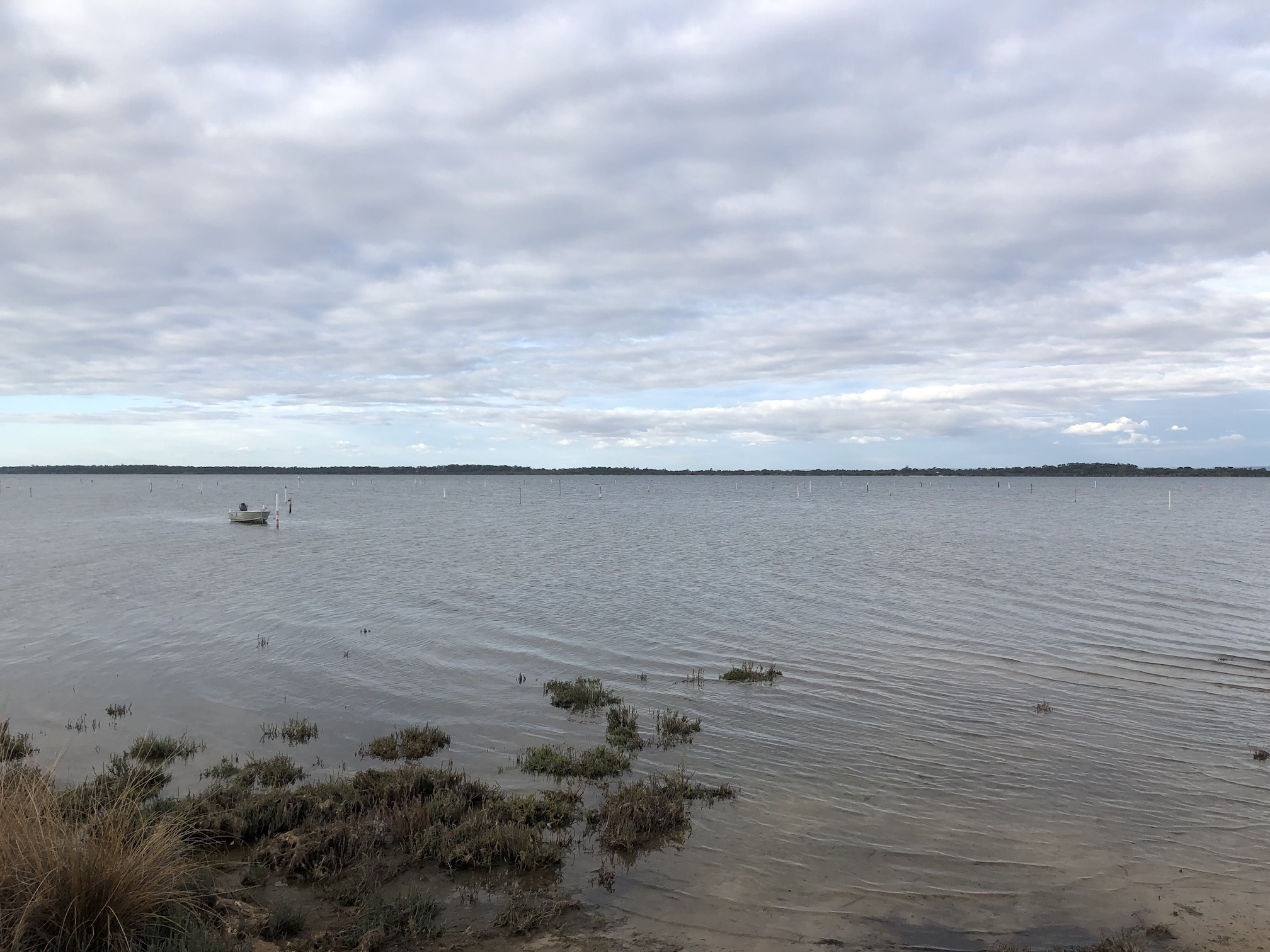 In better times, the Peel Estuary is a peaceful escape